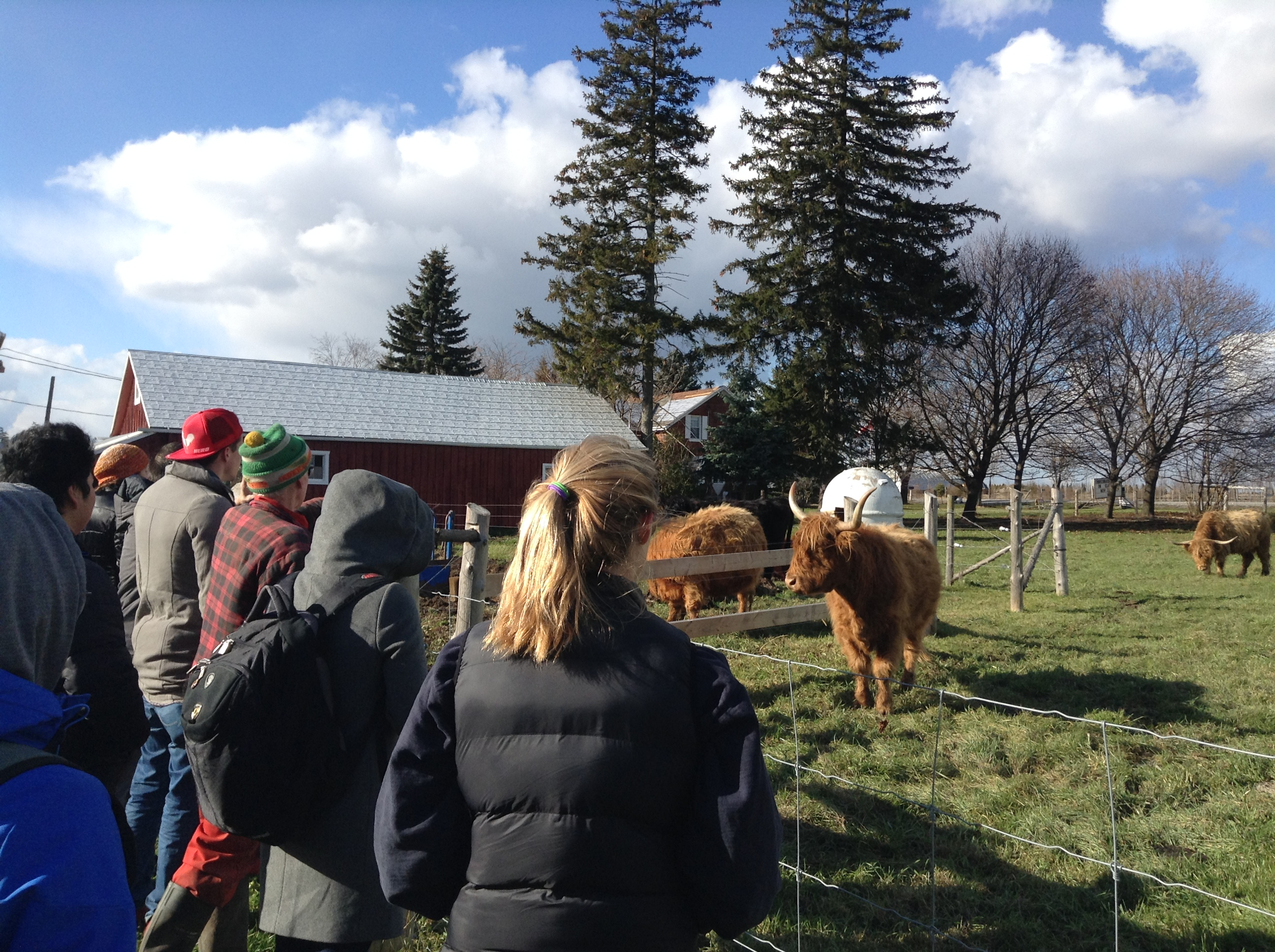 Gallery on the Farm Tour - taken by Josie Di Felice