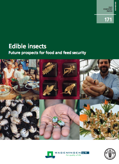 FAO Report_Edible Insects