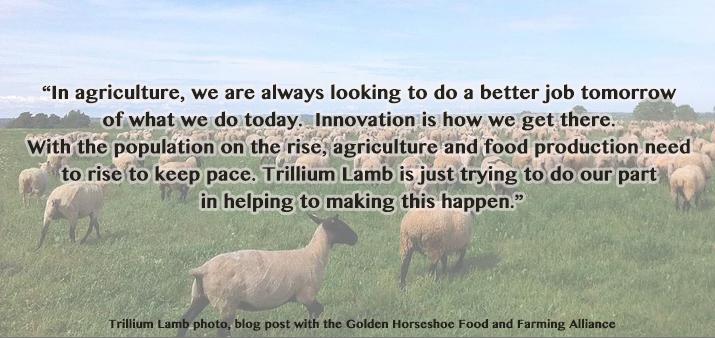 Trillium Lamb quote