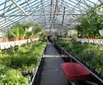 Richters Greenhouse