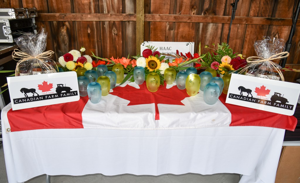 Halton Canada 150 celebration