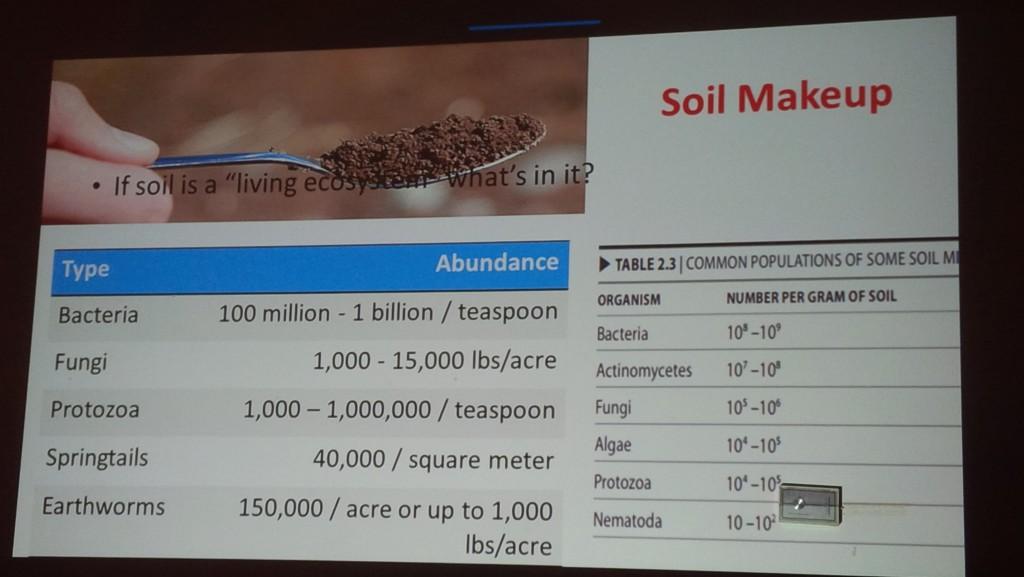 Soil Makeup