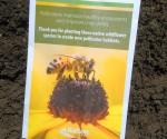 Halton Region Pollinator Seeds